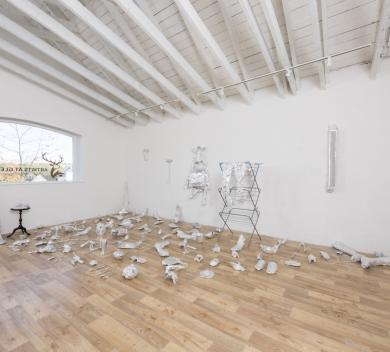 Sitaram Swain Ecdysis Installation view Aluminium foil