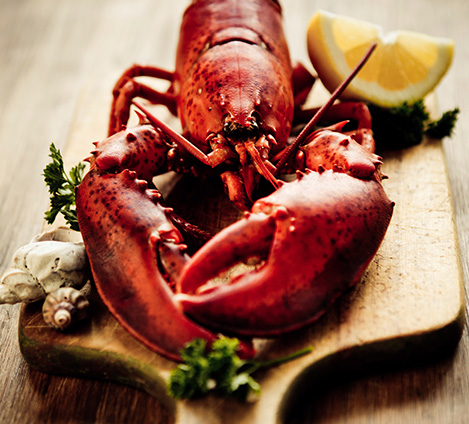 Glenfiddich Steamed Lobster