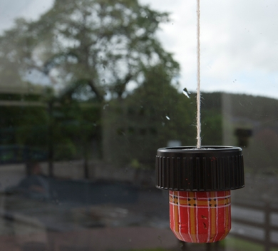 Glenfiddich-Artists in Residence-2012-Juhikadevi-Space-within-Detail-1-004.jpg