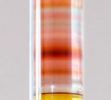 Saejin Choi A Spectrum detail Polycarbonate epoxy Urethane pigment